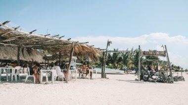 Raices Beach club and Marina