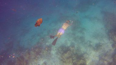Snorkelen Maafushi Malediven