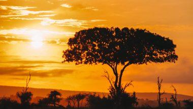 Reisroute Zuid-Afrika