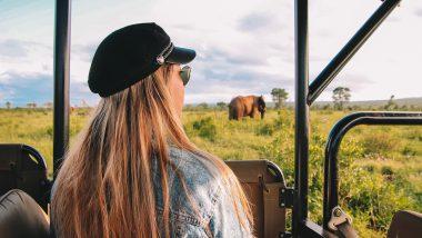 jeepsafari Krugerpark