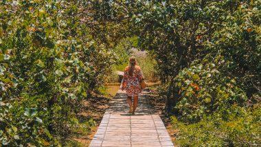 De Boardwalk St. Lucia