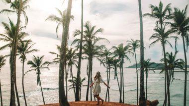 Coconute Tree Hill Mirissa