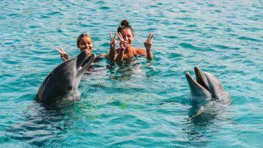Zwemmen met dolfijnen Curaçao