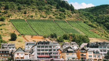 Moselle Wine - Moselle River road trip
