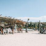 Raices Isla Holbox